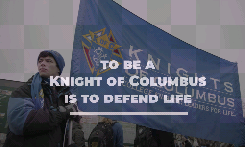 To Be a Knight Is to Defend Life